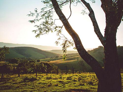 Serra do Itaqueri