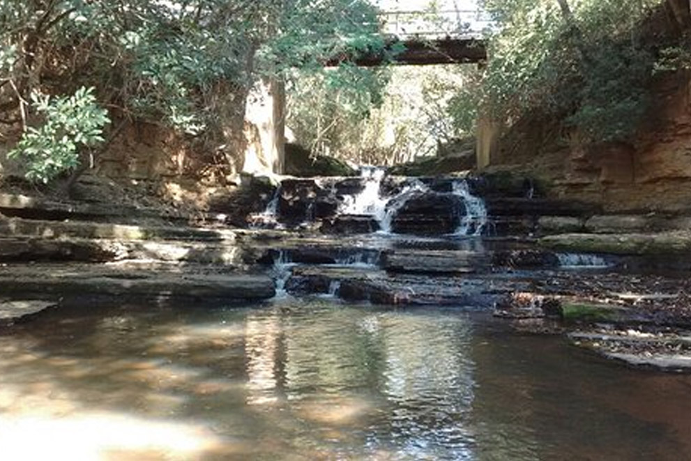 Parque Ecológico Henriqueta Barbeta
