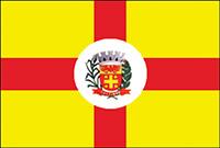 Bandeira de Saltinho